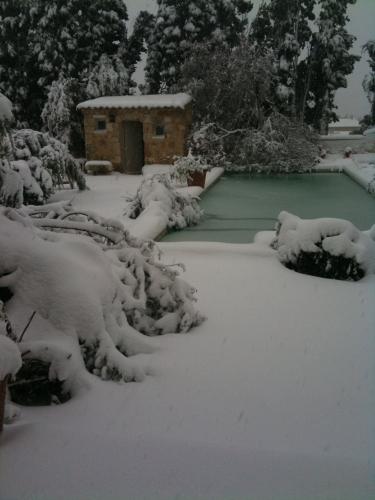 maussane_neige_flandrin.JPG